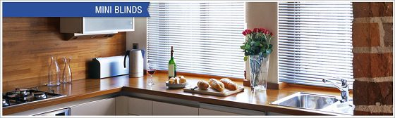 Mini Blinds from SelectBlinds.com