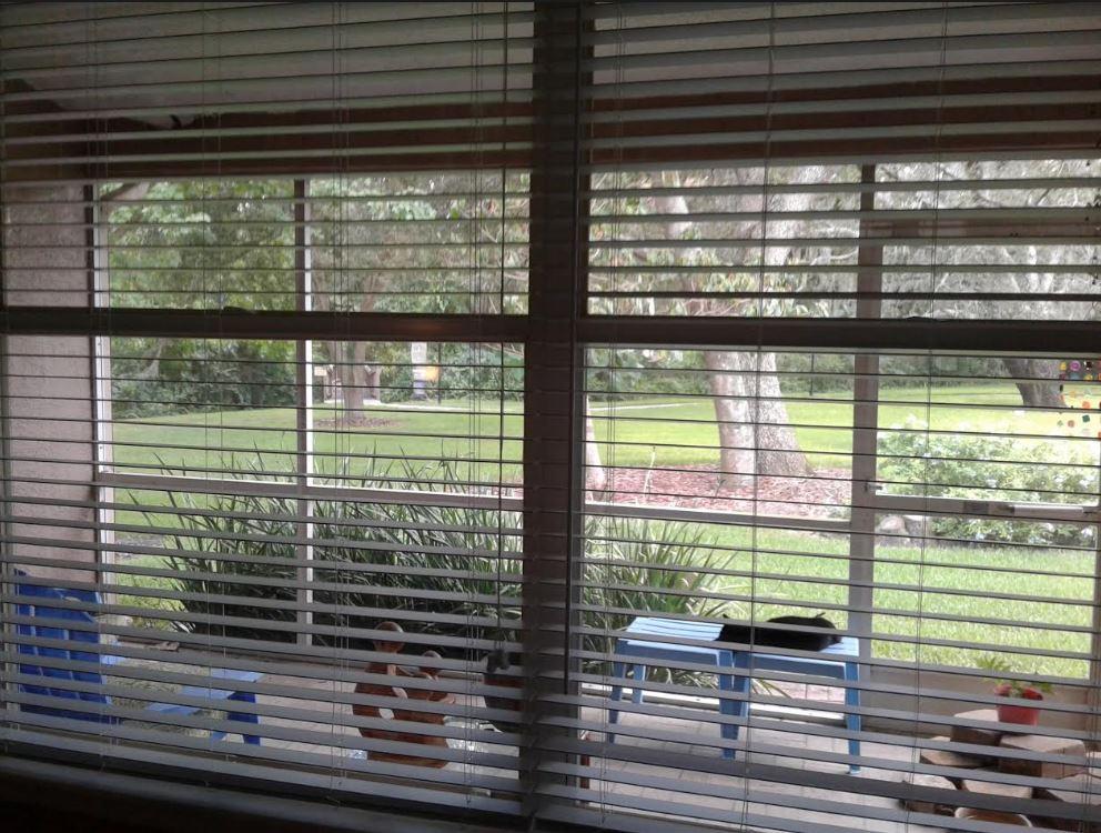 2inch premium faux wood blinds