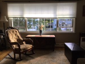 bay window with new signature light filtering cordless cellular shades