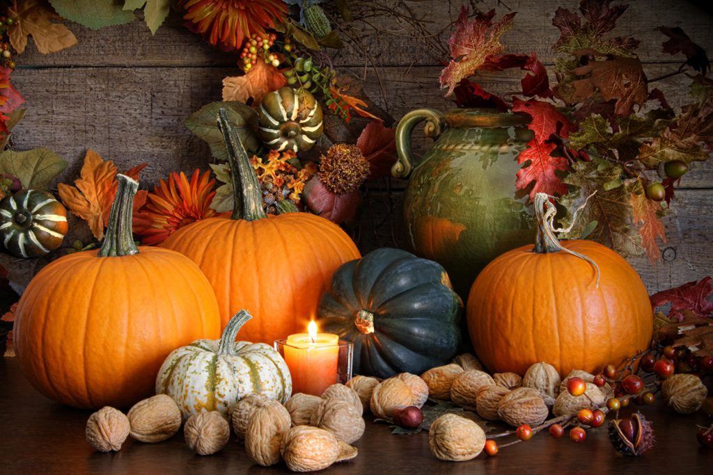 Thanksgiving Decor - Pumpkins and More!