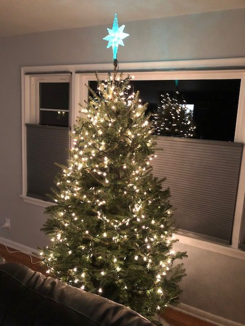 Christmas tree in front of window with top down bottom up select double cell light filtering shades