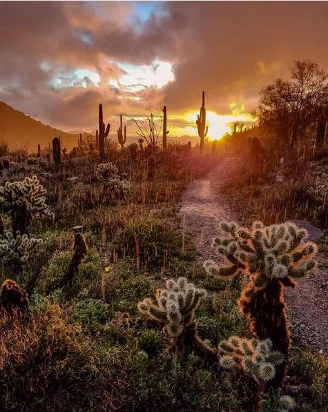 Beautiful Arizona Scenery by @the_hiker
