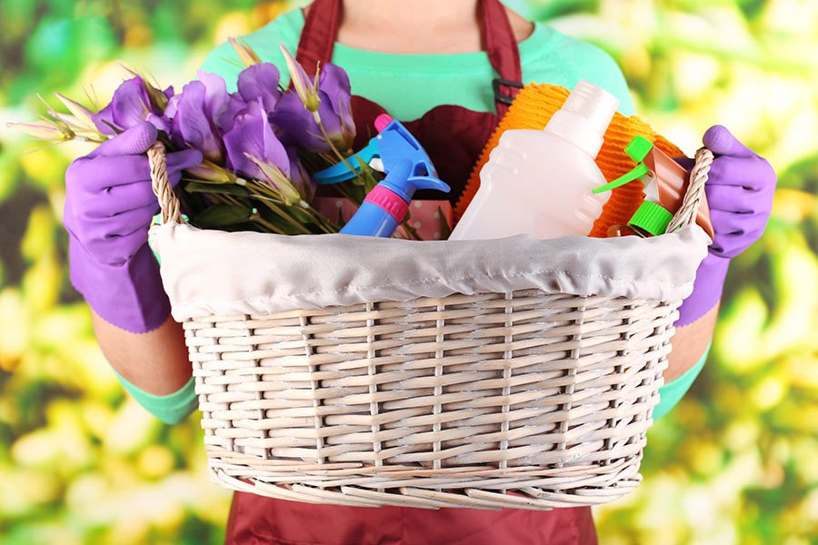 Woman with purple gloves holding basket of spring cleaning supplies