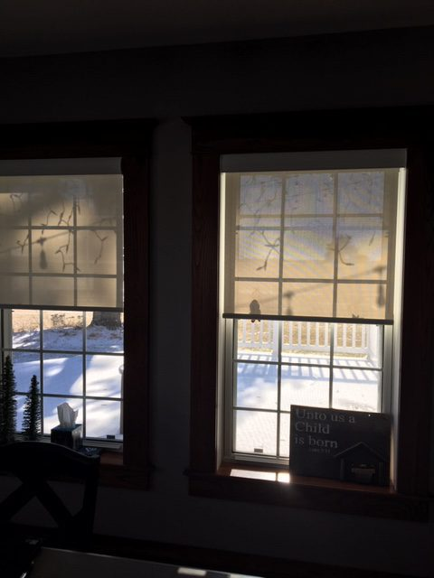 Motorized Sheer Weave Solars reduce glare from snow and sun