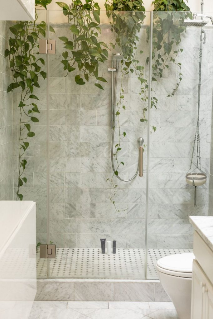 Hang plants in your shower to make it feel like a jungle.
