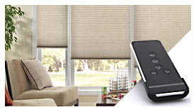 Motorization Options