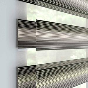 Designer Room Darkening Dual Shade