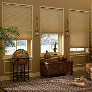 Express Light Filtering Cordless Cellular Shades 4789 Thumbnail