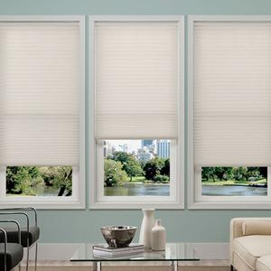 Select Light Filtering No-Holes Pleated Shades 5873