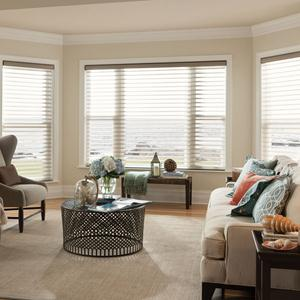 "3"" Light Filtering Sheer Shades 5172"
