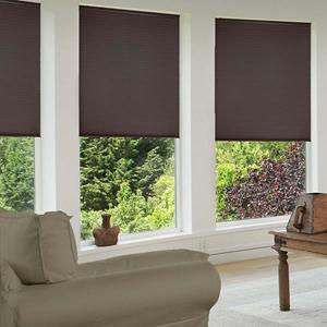 Signature Cordless Blackout Shades 4809