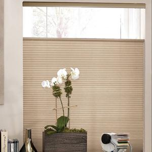 Signature Light Filtering Cordless Top Down Bottom Up Shades 5361