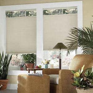 Signature Light Filtering Cordless Top Down Bottom Up Shades 5362