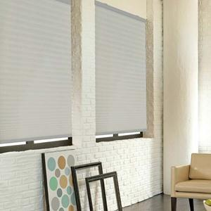 Cordless Pleated Shades 5094