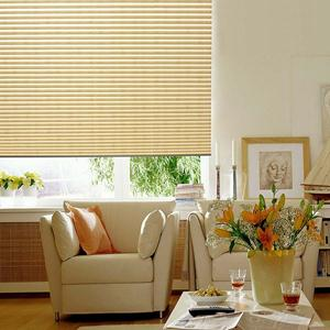 Basic Pleated Shades 5089