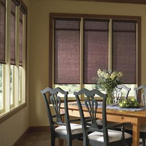 Good Housekeeping Light Filtering Roller Shades 5134