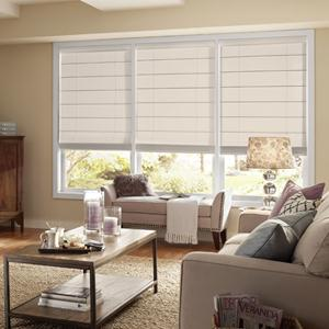 Select Light Filtering Roman Shades 6047