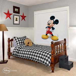 Disney Classic Cordless Roller Shades 4903