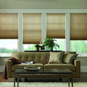 Contemporary Window Coverings and Treatments