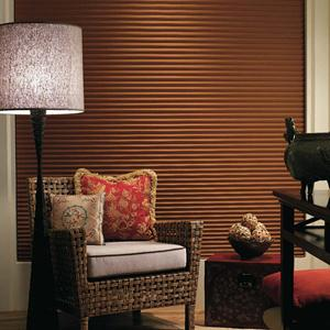 Premier Double Cell Blackout Shades 4954