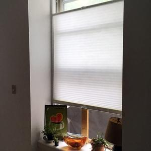 Premier Single Cell Light Filtering Shades 6980