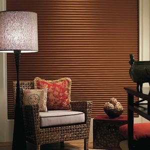 Premier Single Cell Blackout Shades 4965