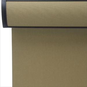 Select Room Darkening Roller Shades with Cassette 6780