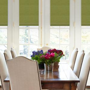 Select Blackout Roman Shades 8306