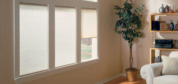 3/4 Cordless Single Cell Light Filtering Shade Custom Blinds and Shades By SelectBlinds.com