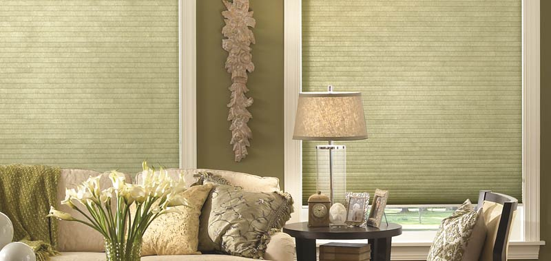 Motorization is available on these Premier Double Cell Light Filtering Shades