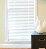 "1"" Designer Mini Blinds"