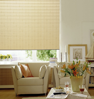 Premium Pleated Shades