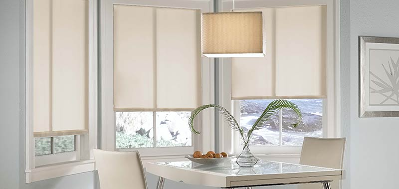 These solar screen roller shades make stylish eco-friendly window coverings.