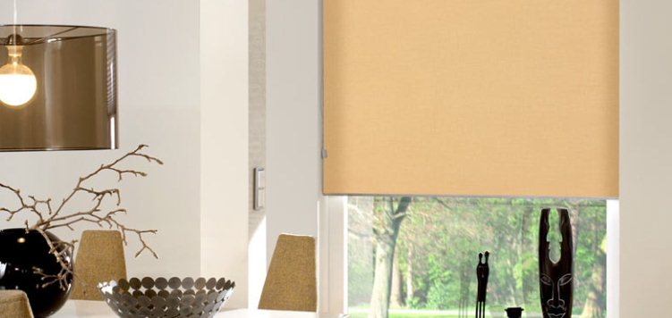 Splendor Fabric Light Filtering Roller Shades Custom Blinds and Shades By SelectBlinds.com