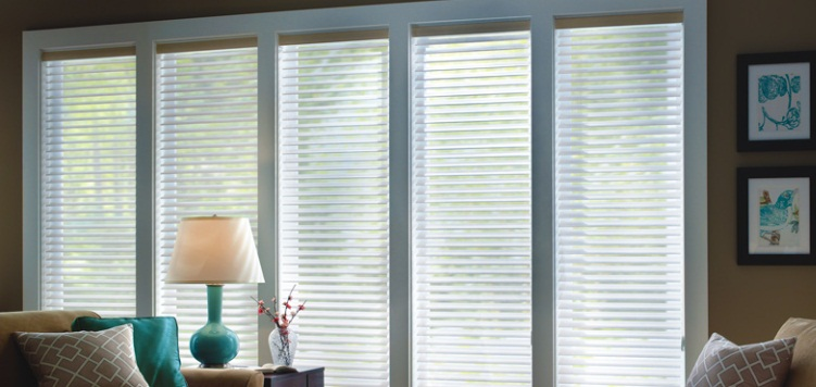 2 Light Filtering Sheer Shades Custom Blinds and Shades By SelectBlinds.com