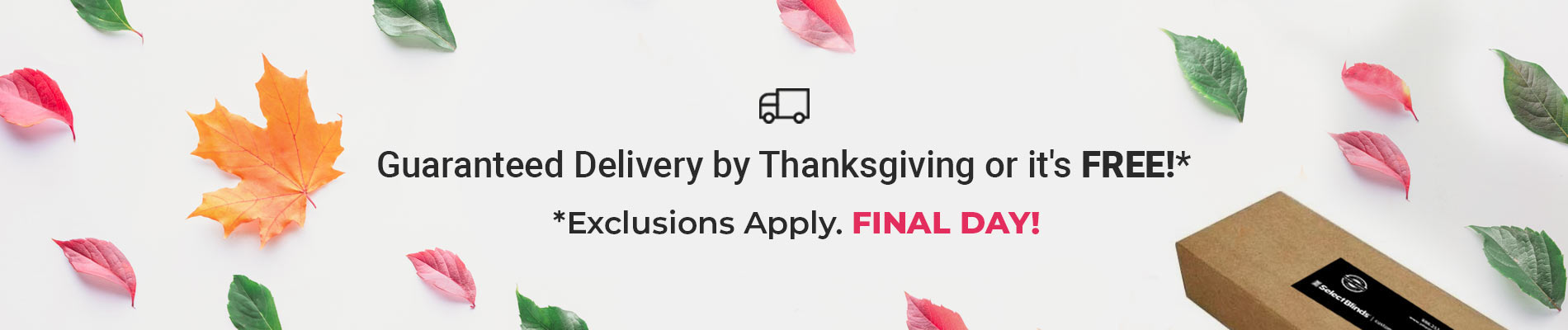 Delivery by Thanksgiving or it's FREE